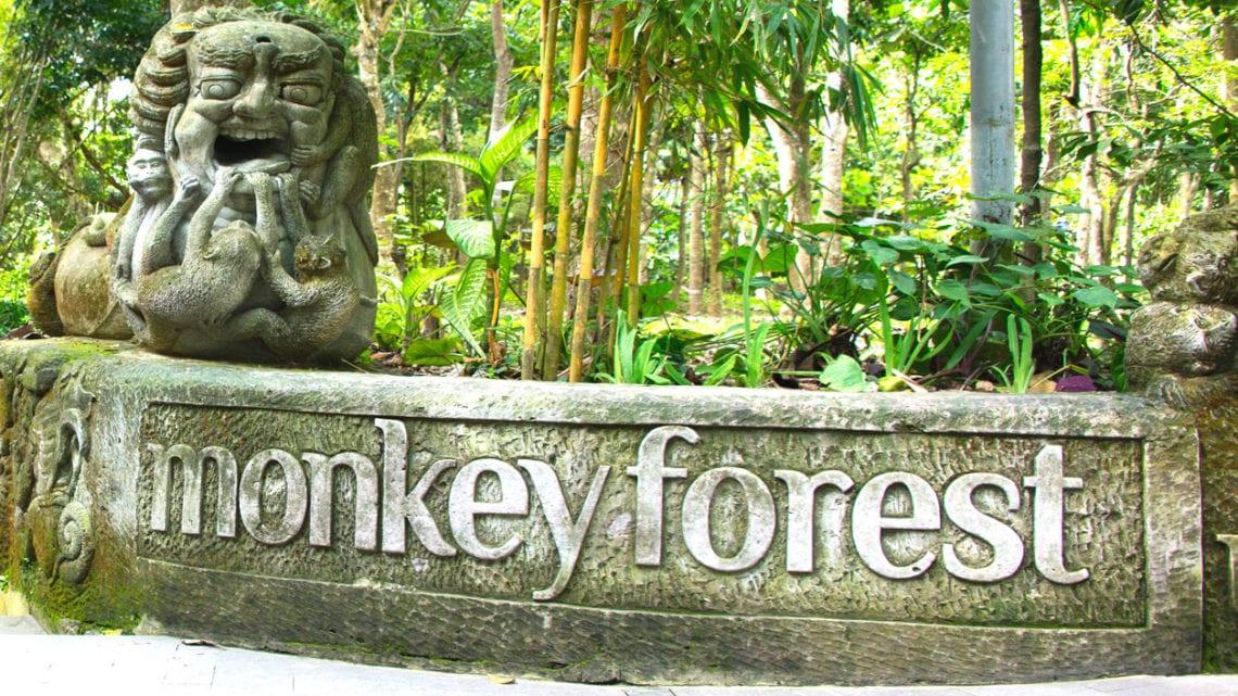Monkey-Forest-Ubud